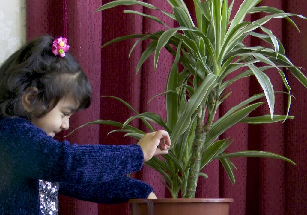 Hoe kan ik mijn huis veilig maken voor mijn kind?