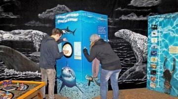 Waterdicht?! in Museum Vlaardingen