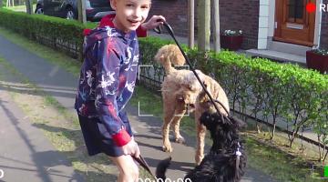 Vlog van Eli: Honden uitlaten
